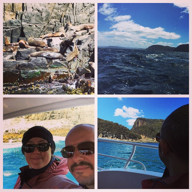 Fur seals, cliffs, albatross, sea caves, and dolphins. Amazing. @brunyislandlongweekend